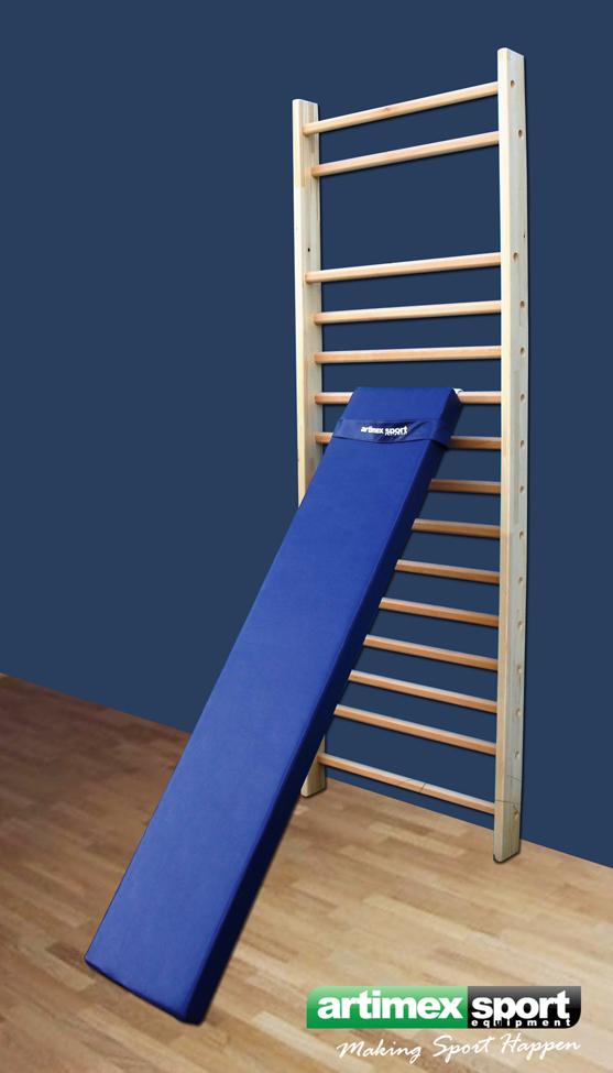 espalier offres pour espalier espalier gymnastique espalier mural barre espalier equipment. Black Bedroom Furniture Sets. Home Design Ideas