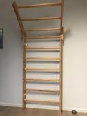 Maße: 200x85 cm, Artikelnummer: 253 Leiter, 229,00 € Stück